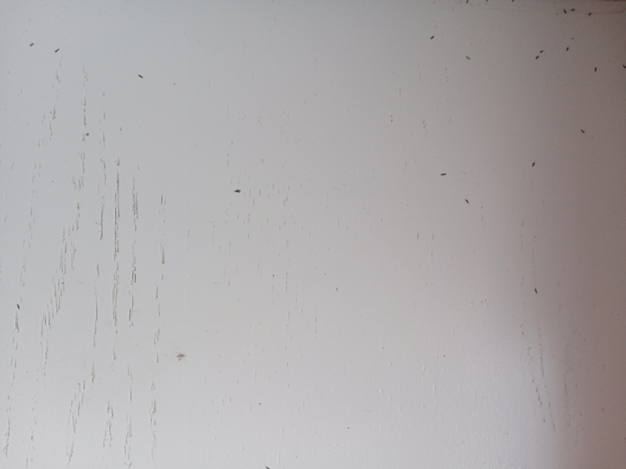 male-czarne-robaki-przecinki