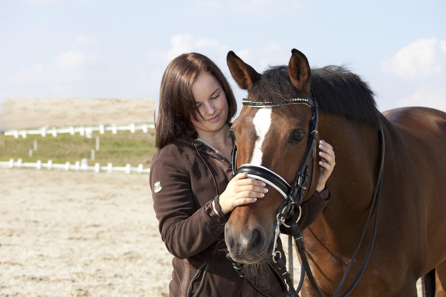 szampon dla koni do zniszczonych wlosow